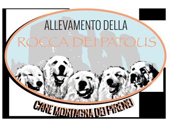 Cane Montagna dei Pirenei - Rocca dei Patous