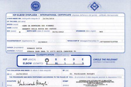 certificazione_habanou